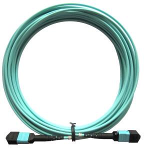 MPO-MPO-Patch-cord-10m