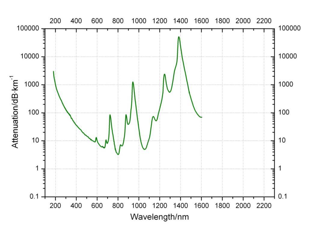 Uv Optimized Quartz Fiber Tarluz Optic Suppliers Probe Diagram Laser Attenuation