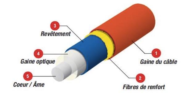 Introduzione alla fibra ottica tarluz fiber optic suppliers - Avantage de la fibre optique ...