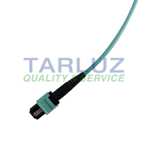 Polarity Switchable/Changeable MPO Plus 12 Fiber Optic Patch
